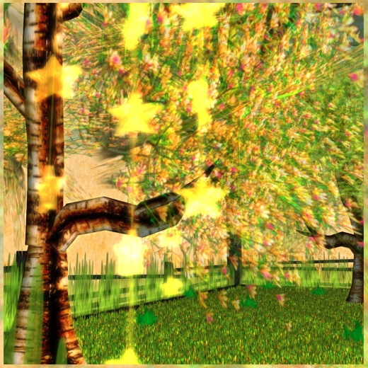 gOLDEN sPRING sKYBOX pic 7